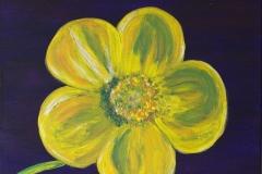 kleineblumen2