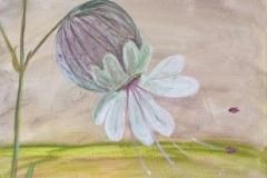 kleineblumen4