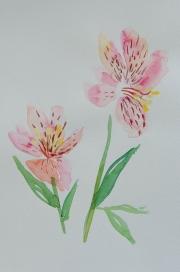 watercolor-flowers-10