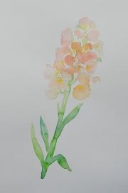 watercolor-flowers-4