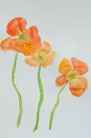 watercolor-flowers-12
