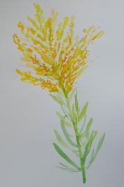 watercolor-flowers-2