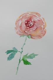 watercolor-flowers-7