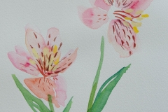 watercolor-flowers-10