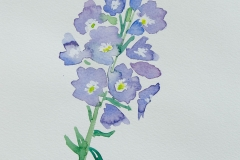 watercolor-flowers-11