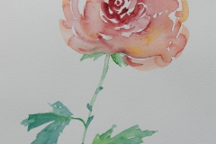 watercolor-flowers-7