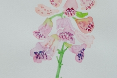 watercolor-flowers-9