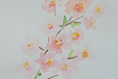 watercolor-flowers-8